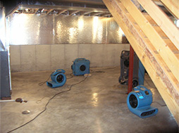 water-restoration-basement